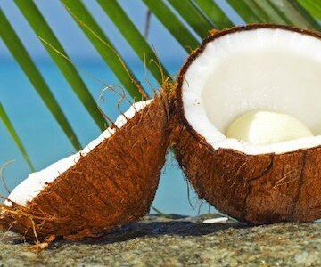 Olio di cocco: come usarlo su viso, corpo e capelli
